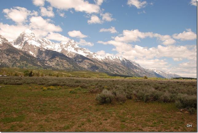06-04-13 D Teton Road Moose to Jenny Lake (4)