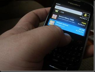 Blackberry1-800x600