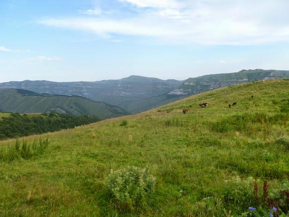 Plateau près de Khasaut (Karachaiévo-Tcherkessie), 16 août 2014. Photo : J. Marquet