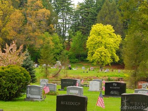 6. graveyard DSC_0013