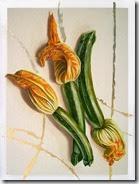 zucchine 30x40