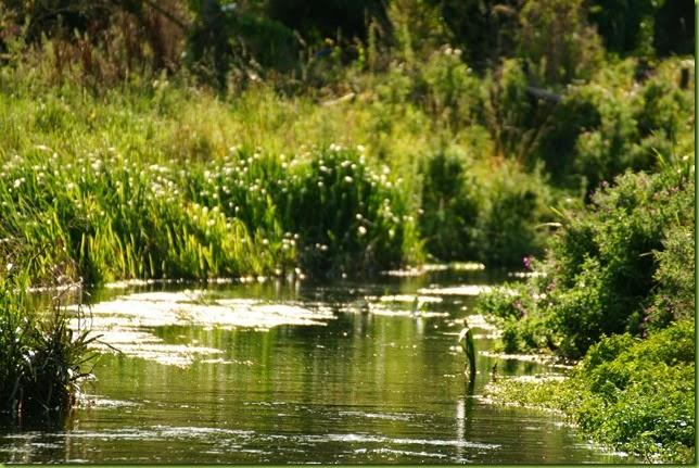 Fakenham river