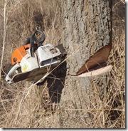 chainsaw stuck