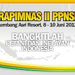 Backdrop Rapimnas II PPNSI.JPG