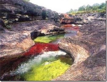 columbia-river-cano-cristales-4