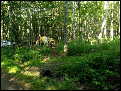 Camden Hills Campground 023