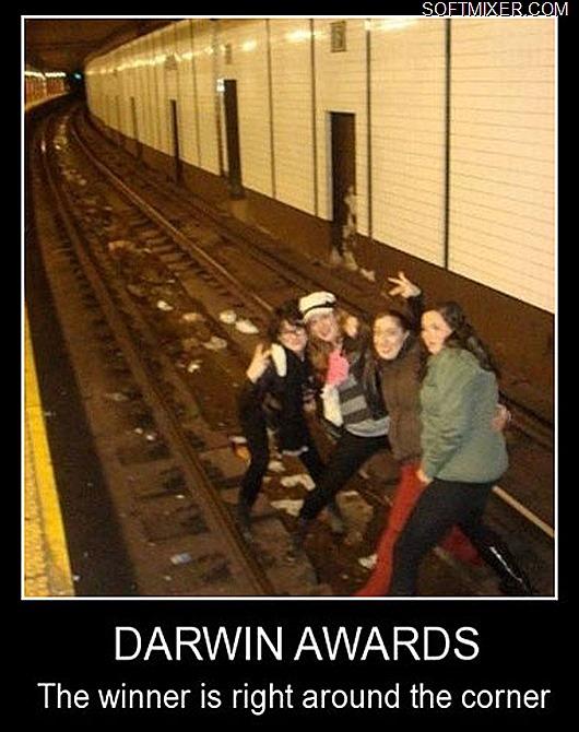 darwin(2)