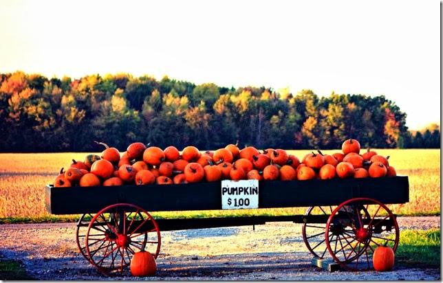 pumpkinwagonposter