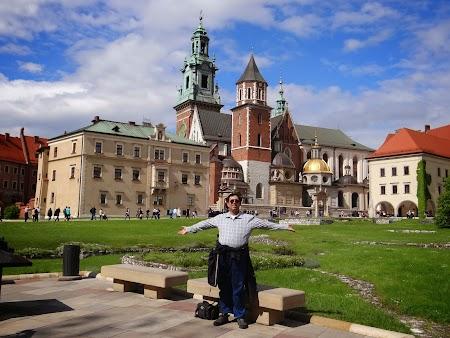 41. Palatul Wawel - Cracovia.JPG