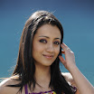 Trisha Latest Pictures Gallery 2012