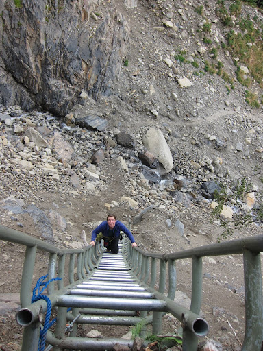 A steep ladder hiking above Glacier Grey.