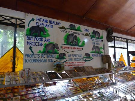 Produse de caca de elefant in Sri Lanka