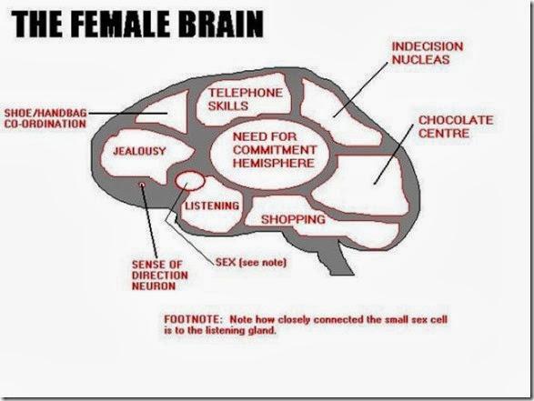 crazy-women-logic-7