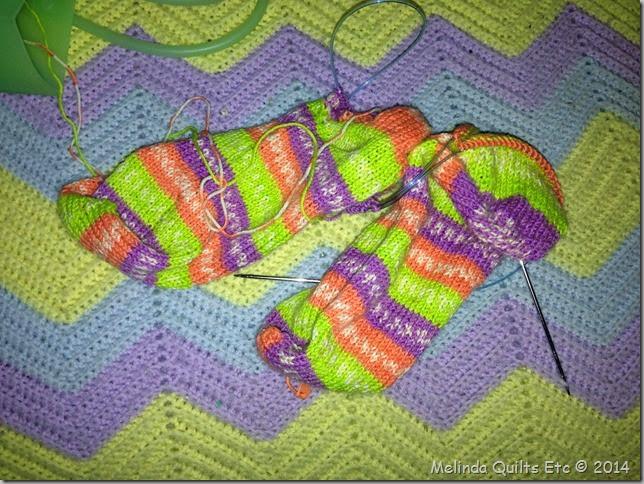 010314 Socks