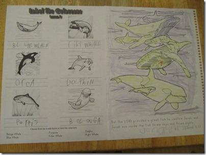 Apologia Zoo 2:  Swimming Creatures Homeschool Review http://homeschoolheartandmind.blogspot.com