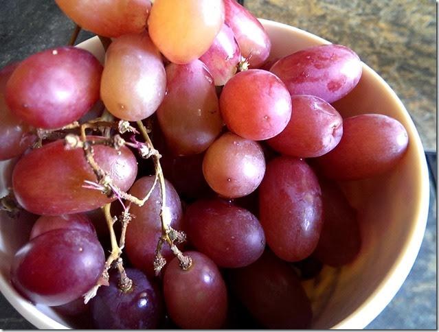 grapes-public-domain-pictures-1 (2281)