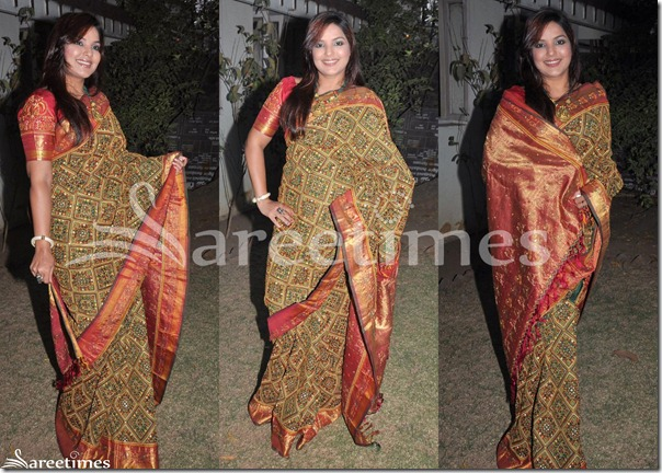 Mansi_Embroidery_Saree