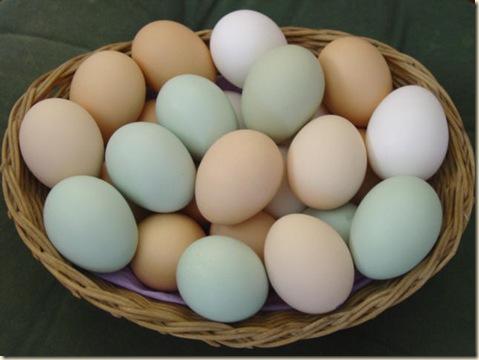 huevo-desayuno-saludable