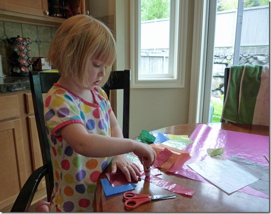 Making a Kite 1