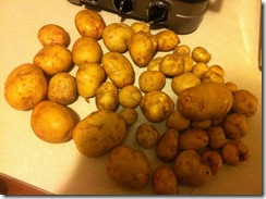 Potatos 2012
