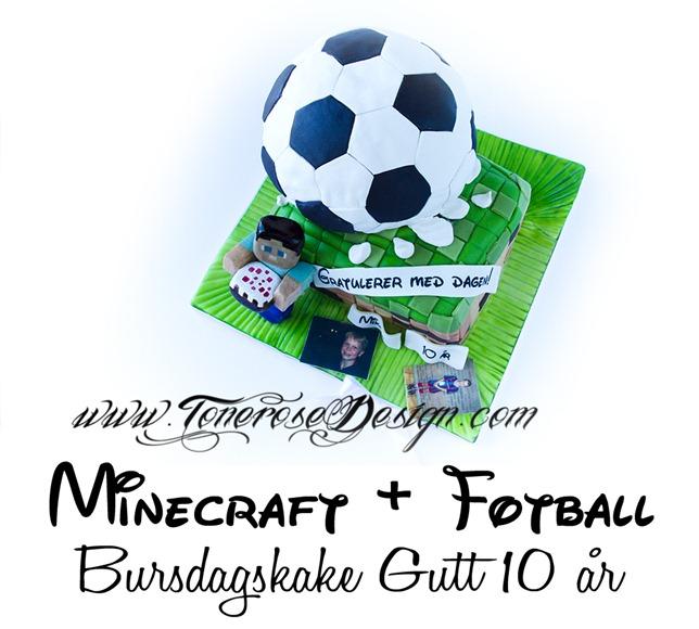 IMG_0995 bursdagskake minecraft fotball