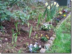 planting-flowers-1204-2