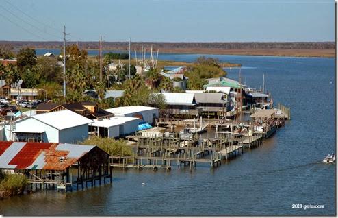 Apalachicola River 042