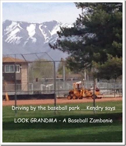 Baseball Zambonie copy