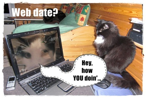 web date