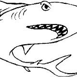 dibujos-colorear-tiburones-p.jpg