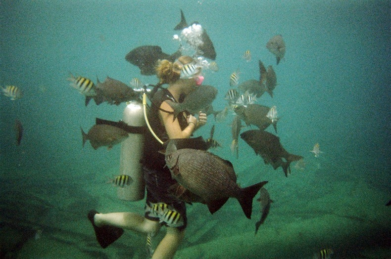cayman-island-shipwreck-17