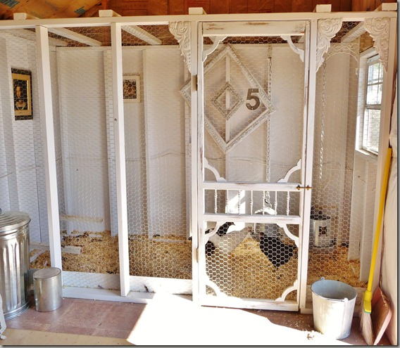 yard and coop 029