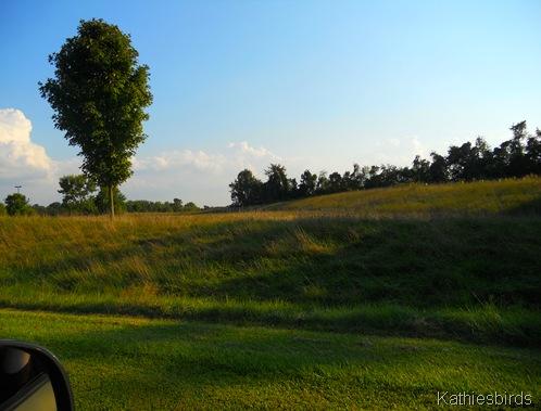 2. roadside-kab