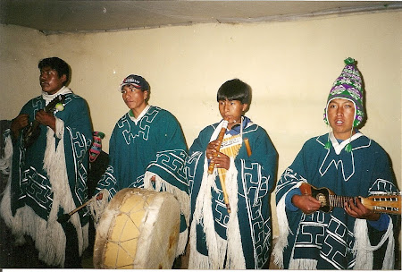 Things to do in Titicaca: traditional music band in Antamani
