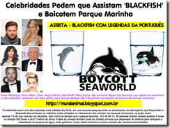 boycott-seaworld[3][5]