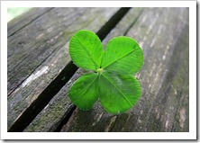 4-leaf-clover-optimized