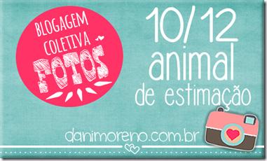 animal_estimação