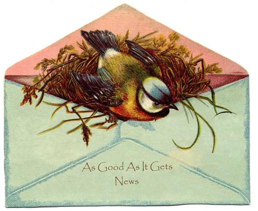 birdinenvelopeNoAdvertising-gfairy copy