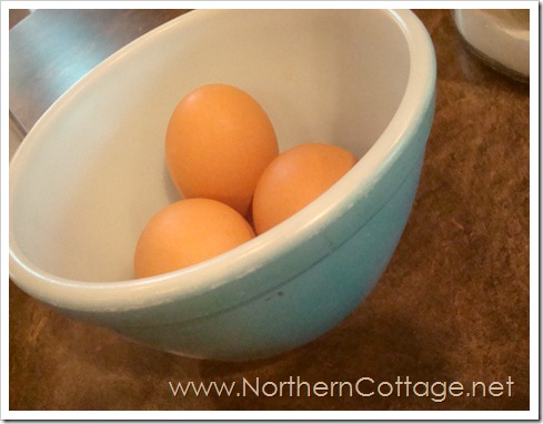 eggs @ northerncottage.net
