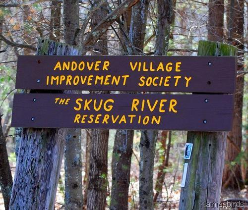 1. Skug river-kab