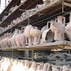 COTA Photo Album - Fiera Pompei 27-28 Febbraio 2010 Stand COTA e visita scavi archeologici