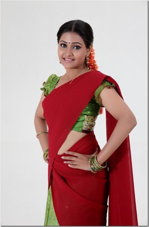 Actress Nandagi New Pic in Saree