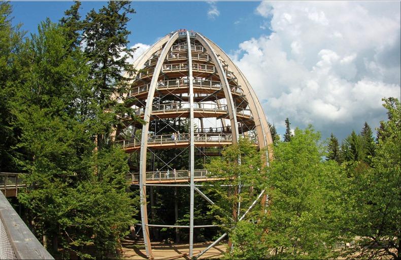 bavaria-treetop-walk-7