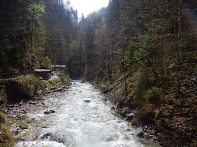 rushing river.JPG
