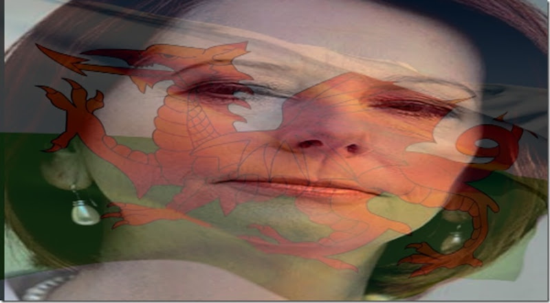 Gillard Welsh Flag 1