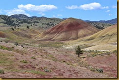 Painted Hills 9