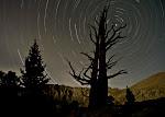 Cottonwoods-25.jpg