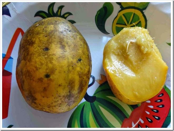 Cajá, esta fruta você vai adorar!