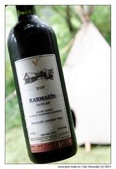 karmazin_2009