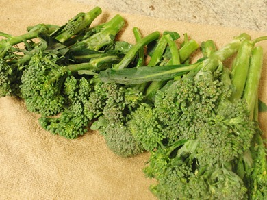 Broccoli Crunch 1